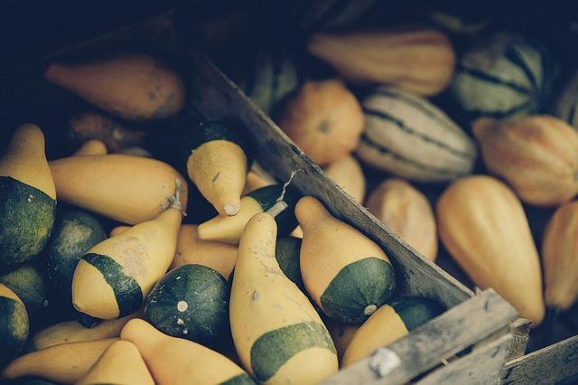 pumpkin-1439038_640